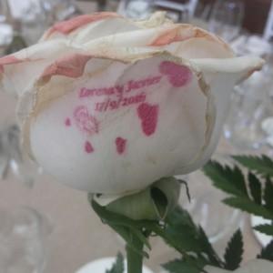 rosa-tatuada