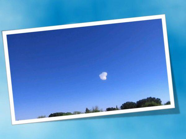 Una nube para ti Flogos