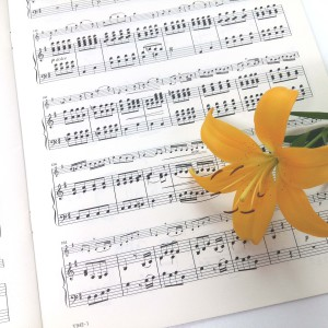 Una canción para ti